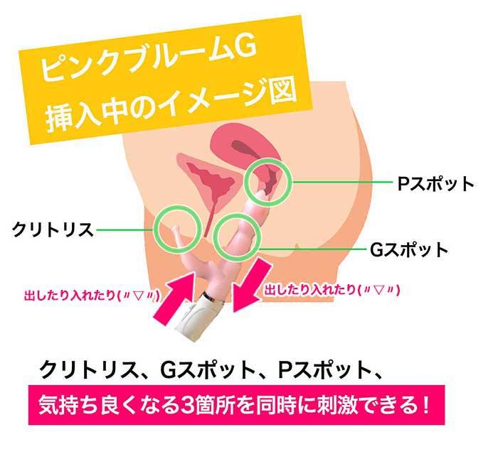 ピンクブルームGの使い方の画像